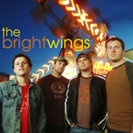 the_bright_wings_cover.png